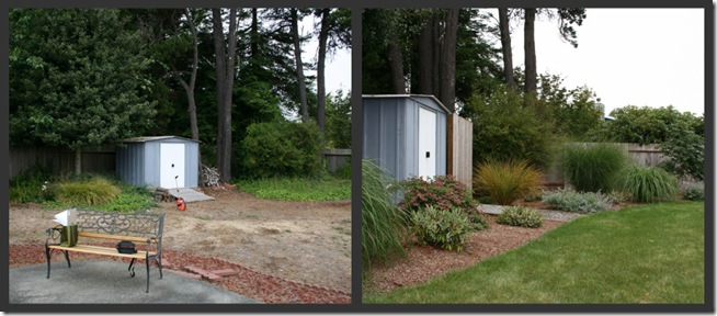 Before After McKinleyville Garden