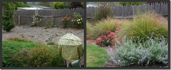 Before After McKinleyville landscape