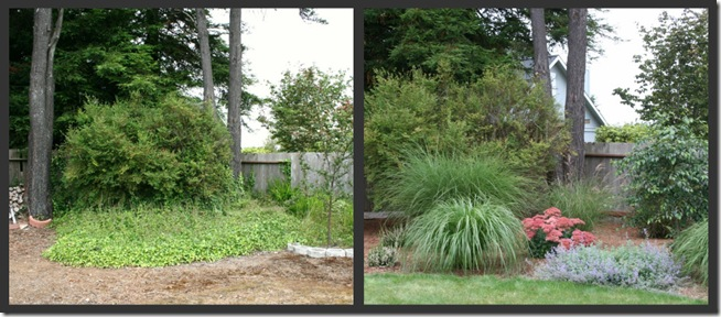 before after McKinleyville landscape design