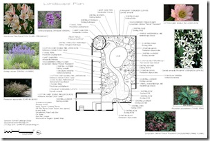 Landscape Plan Example 5